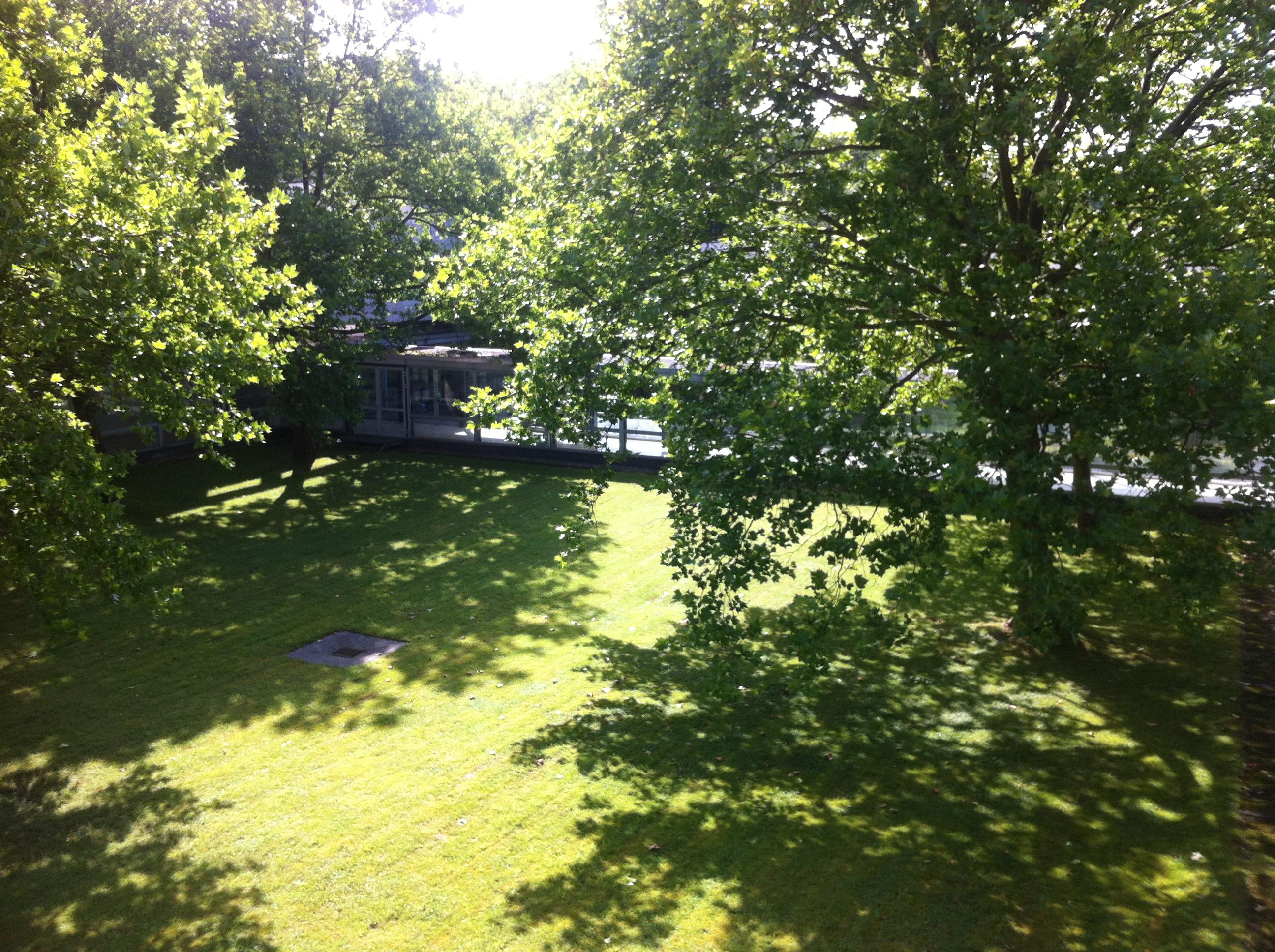 Blick aus dem Fenster: Schön grün ist es hier
